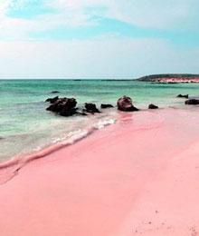 Oh Nein Gibt Es Den Rosa Strand In Italien Bald Etwa Nicht Mehr