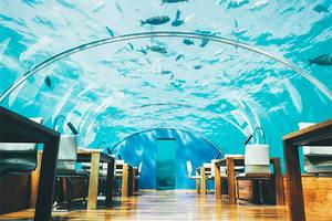 Das erste Unterwasser-Restaurant der Welt hat auf den Malediven geöffnet