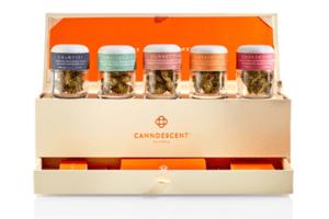 Canndescent verpackt Marihuana in einer schönen Box, sodass man glauben könnte, es sei ein High-End Luxusprodukt, dass man sich nie im Leben leisten könne.